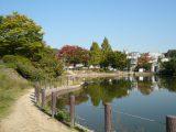 樋之池公園 徒歩12分
