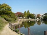 樋の池公園 徒歩4分